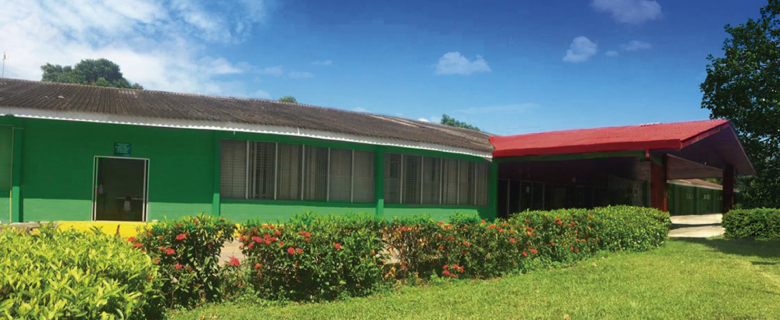 Teletón San Pedro Sula